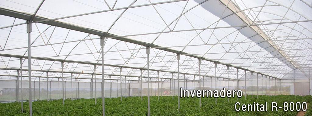 Construcci n de invernaderos for Construccion de viveros e invernaderos
