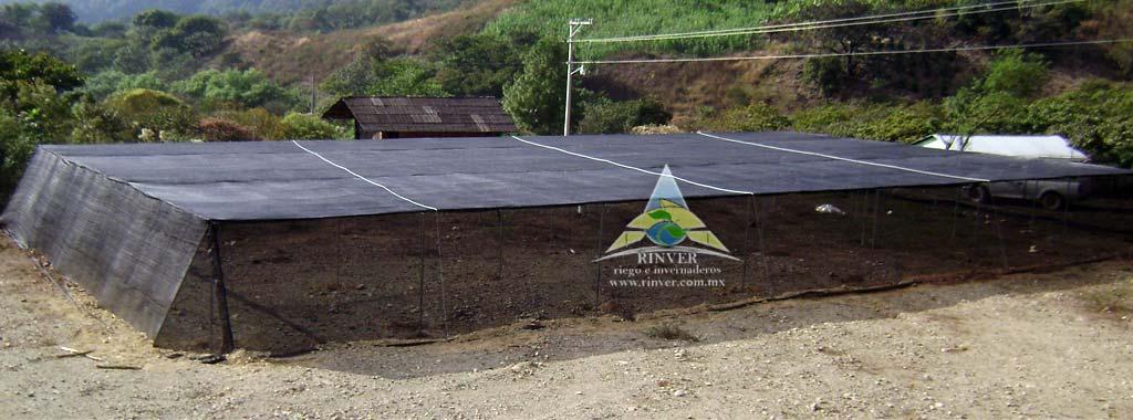 Casas sombra for Tipos de viveros forestales